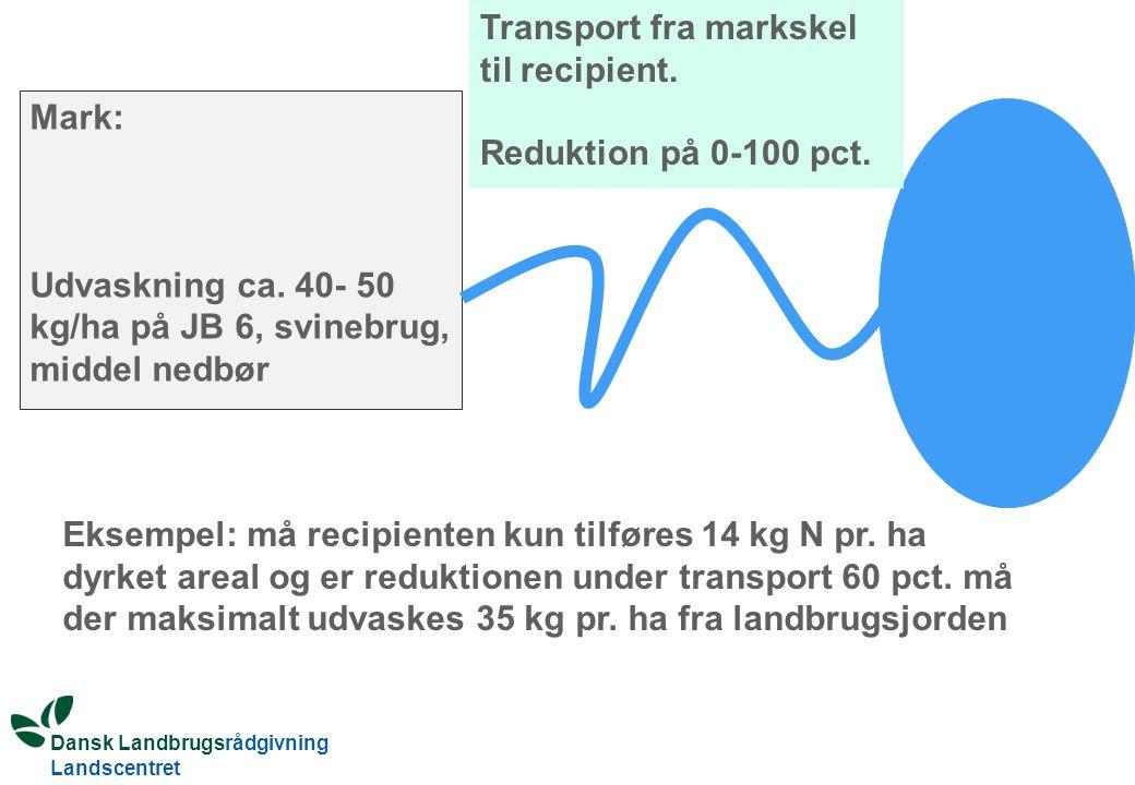 Dansk Landbrugsrådgivning Landscentret Mark: Udvaskning ca.