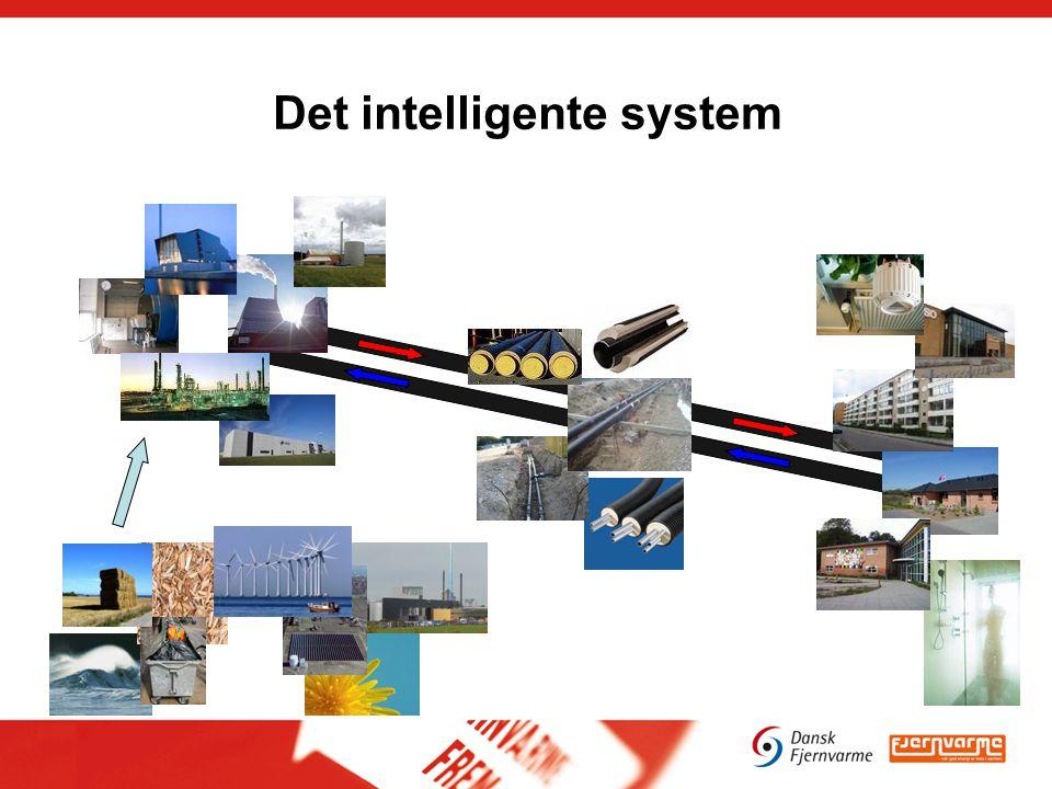 Det intelligente system