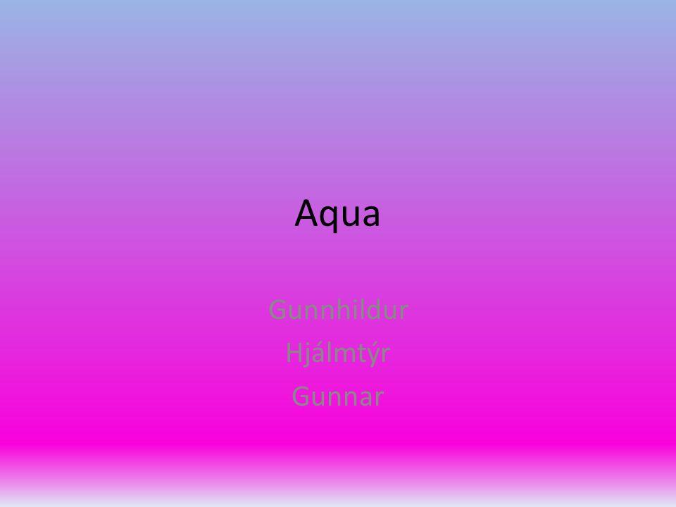 Aqua Gunnhildur Hjálmtýr Gunnar