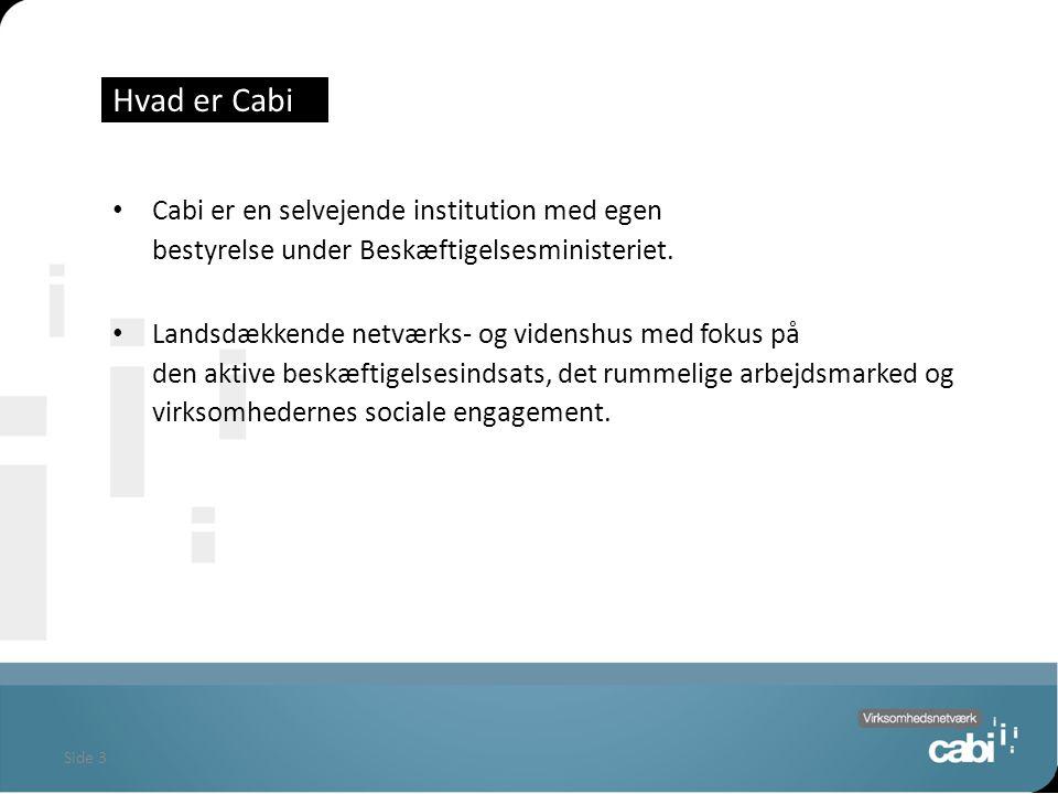 Side 3 Hvad er Cabi Cabi er en selvejende institution med egen bestyrelse under Beskæftigelsesministeriet.