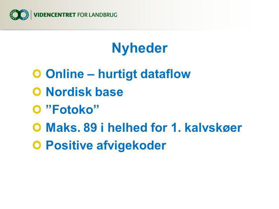 Nyheder Online – hurtigt dataflow Nordisk base Fotoko Maks.