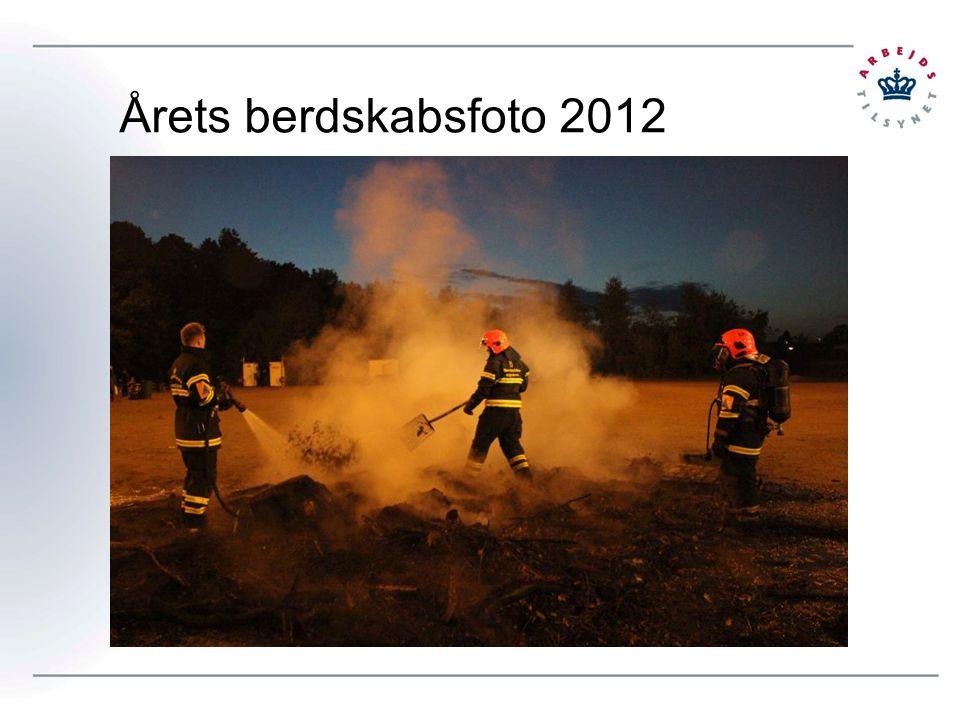 Årets berdskabsfoto 2012