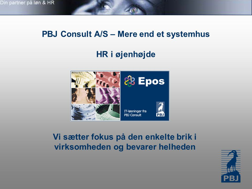 PBJ Consult A/S – Mere end et systemhus HR i øjenhøjde Vi sætter fokus på den enkelte brik i virksomheden og bevarer helheden