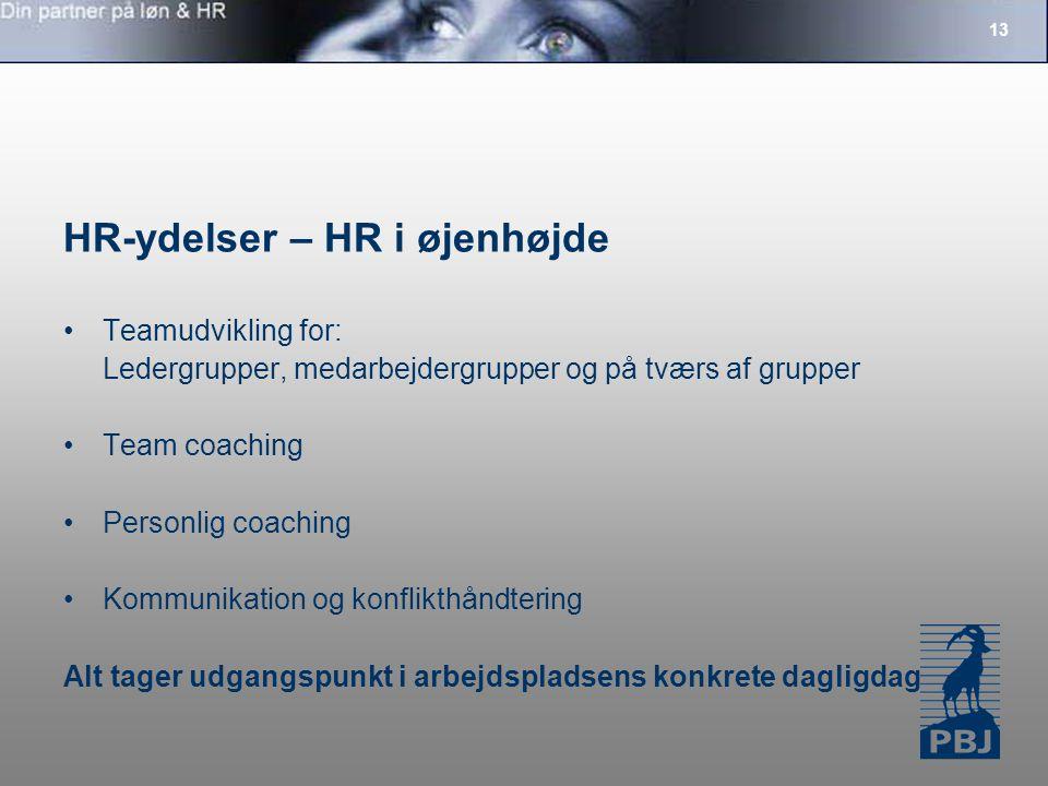 13 HR-ydelser – HR i øjenhøjde Teamudvikling for: Ledergrupper, medarbejdergrupper og på tværs af grupper Team coaching Personlig coaching Kommunikation og konflikthåndtering Alt tager udgangspunkt i arbejdspladsens konkrete dagligdag