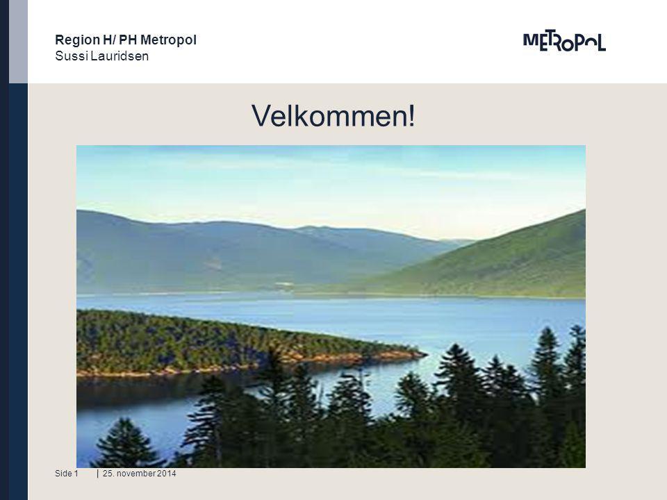 Region H/ PH Metropol Sussi Lauridsen Tekstside Underrubrik i fed tekst.