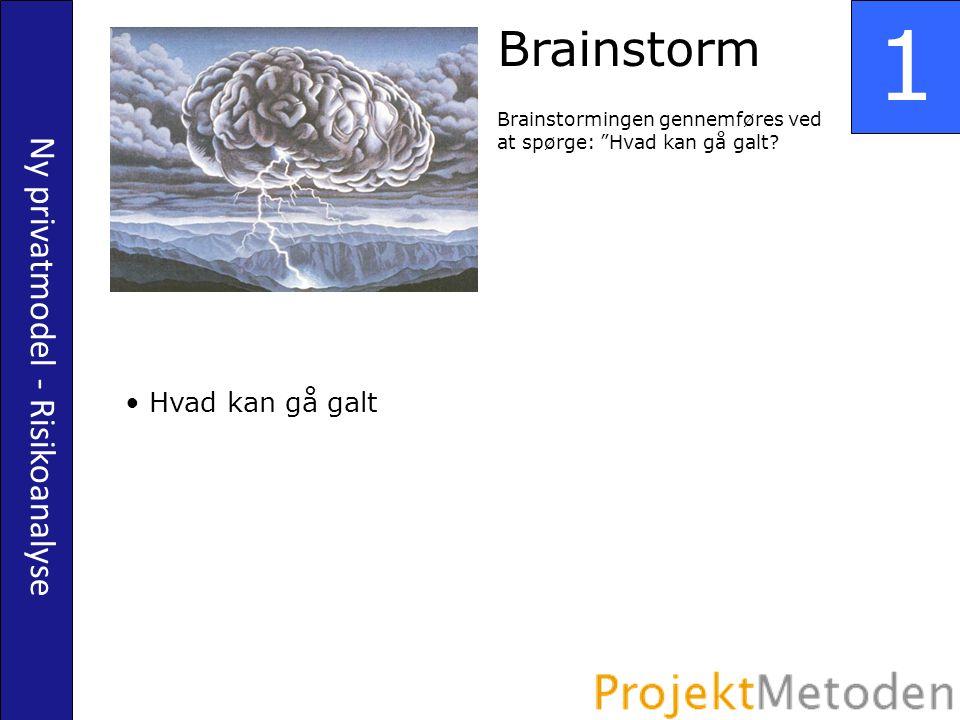 Ny privatmodel - Risikoanalyse 1 Brainstorm Brainstormingen gennemføres ved at spørge: Hvad kan gå galt.