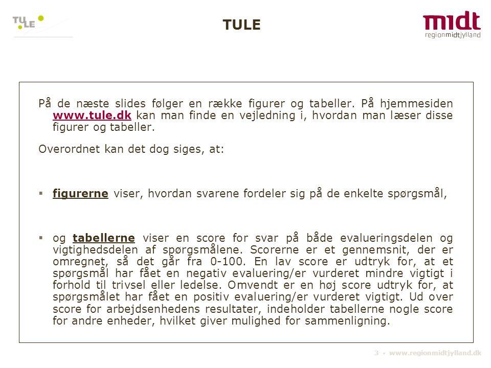 3 ▪ www.regionmidtjylland.dk På de næste slides følger en række figurer og tabeller. På hjemmesiden www.tule.dk kan man finde en vejledning i, hvordan