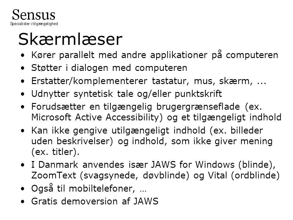 Skærmlæser Kører parallelt med andre applikationer på computeren Støtter i dialogen med computeren Erstatter/komplementerer tastatur, mus, skærm,...