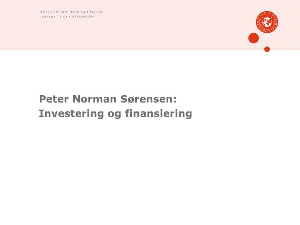 Peter Norman Sørensen: Investering og finansiering