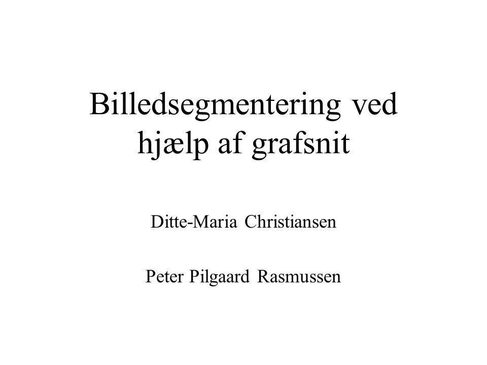 Billedsegmentering ved hjælp af grafsnit Ditte-Maria Christiansen Peter Pilgaard Rasmussen