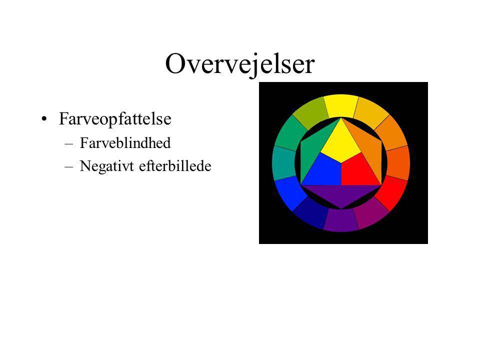 Overvejelser Farveopfattelse –Farveblindhed –Negativt efterbillede