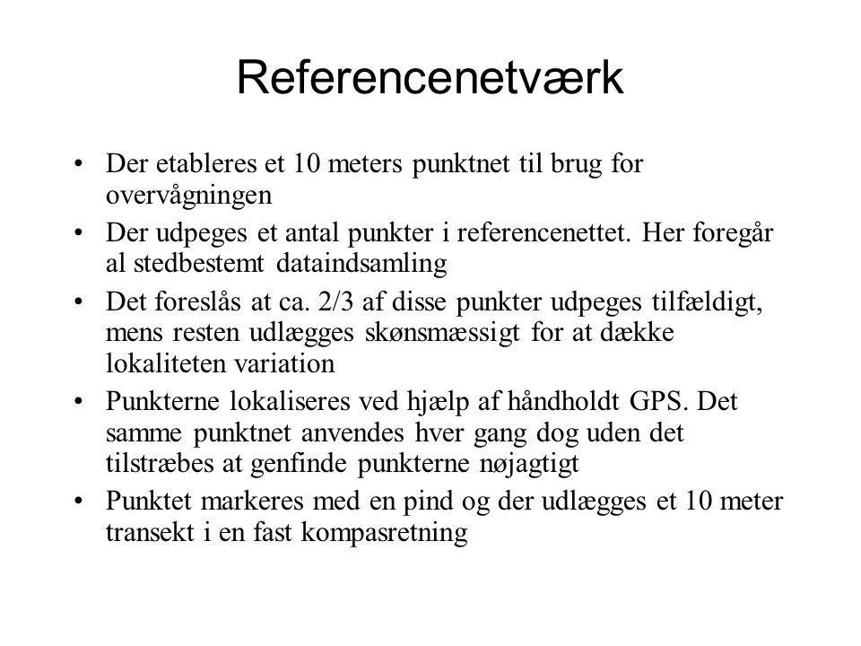 Referencenetværk Der etableres et 10 meters punktnet til brug for overvågningen Der udpeges et antal punkter i referencenettet.