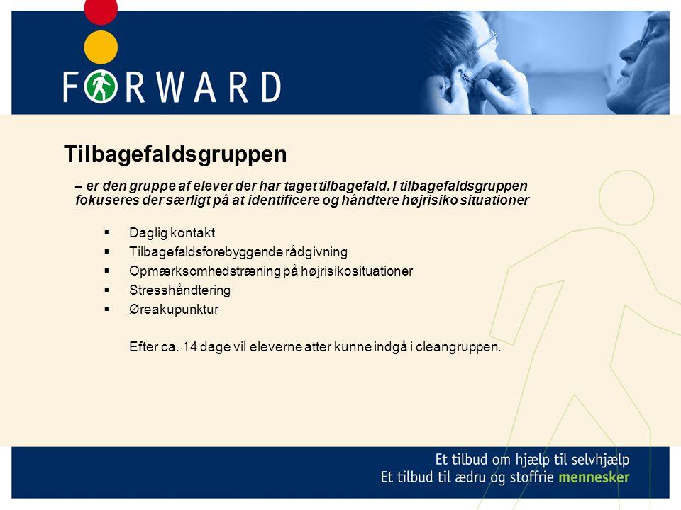  Daglig kontakt  Tilbagefaldsforebyggende rådgivning  Opmærksomhedstræning på højrisikosituationer  Stresshåndtering  Øreakupunktur Efter ca.
