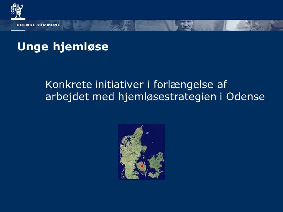 Unge hjemløse Konkrete initiativer i forlængelse af arbejdet med hjemløsestrategien i Odense