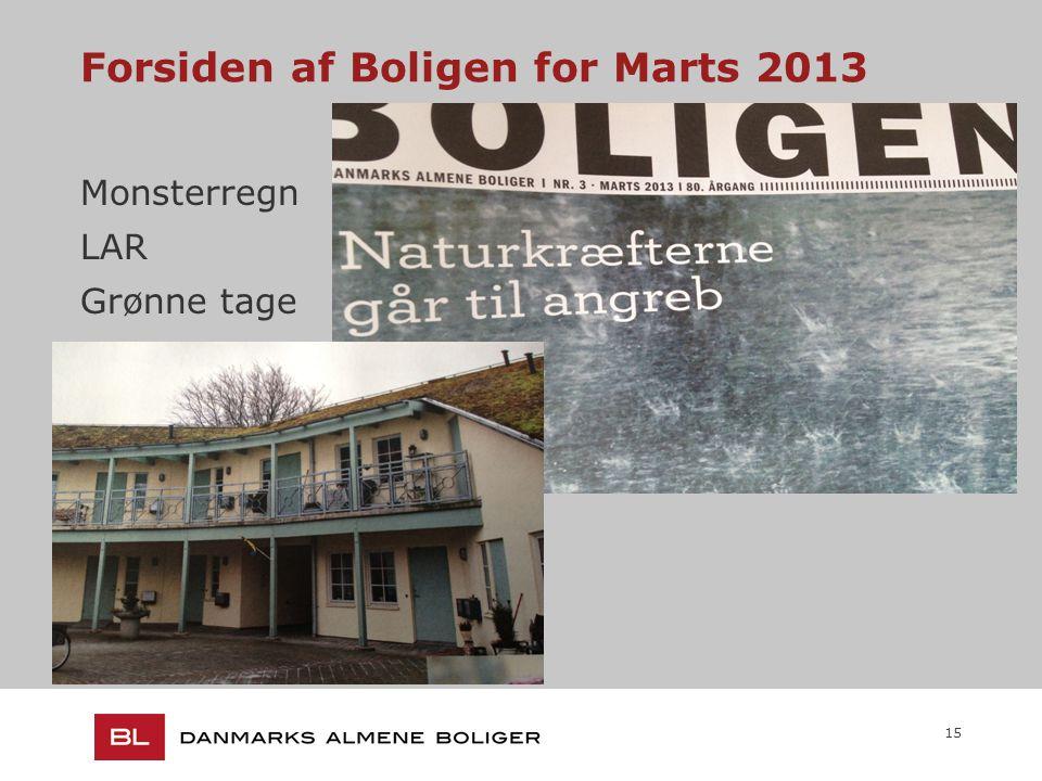 15 Forsiden af Boligen for Marts 2013 Monsterregn LAR Grønne tage