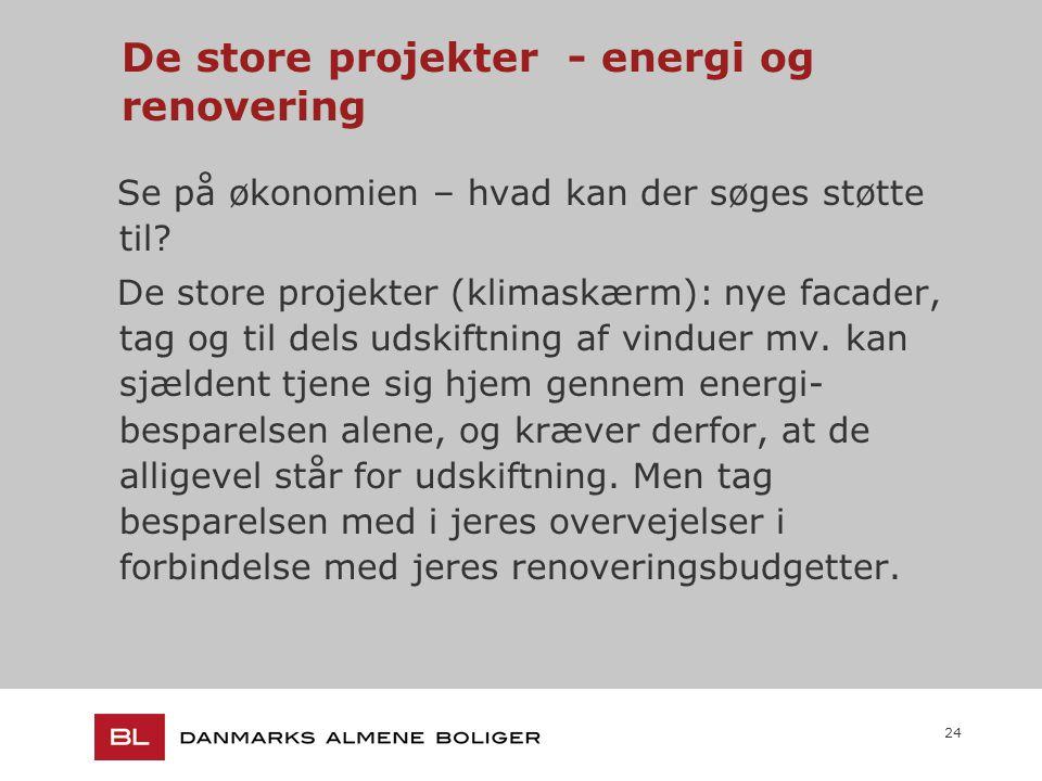 24 De store projekter - energi og renovering Se på økonomien – hvad kan der søges støtte til.