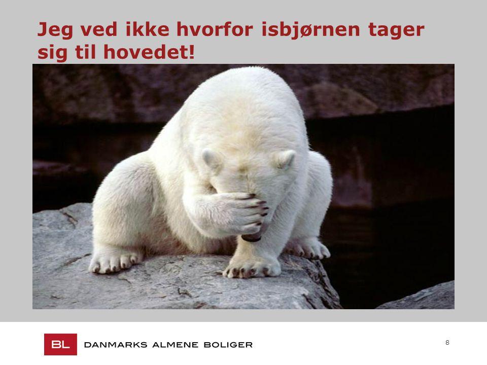 8 Jeg ved ikke hvorfor isbjørnen tager sig til hovedet!.