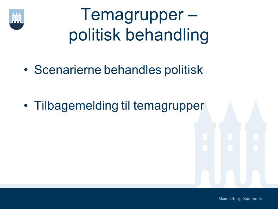 Skanderborg Kommune Temagrupper - tilretning Temagrupperne bearbejder output fra borgermøder/webdebat/medieomtale Styregruppen samler resultatet på web og eller papir