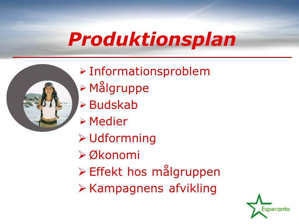 Produktionsplan  Informationsproblem  Målgruppe  Budskab  Medier  Udformning  Økonomi  Effekt hos målgruppen  Kampagnens afvikling