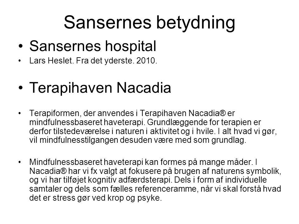 Sansernes betydning Sansernes hospital Lars Heslet.