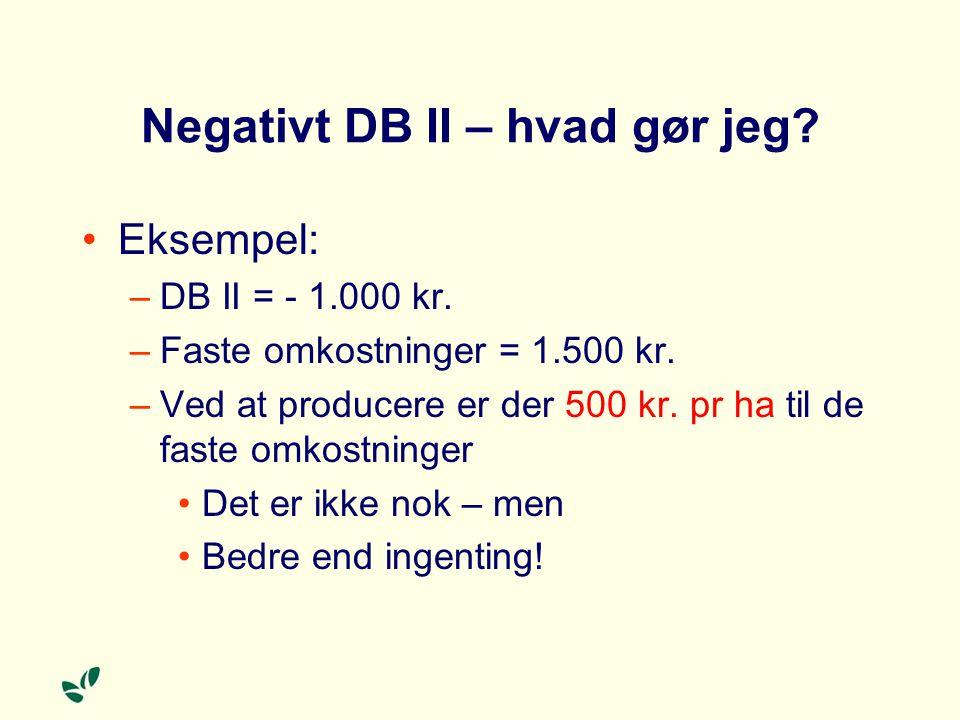 Negativt DB II – hvad gør jeg. Eksempel: –DB II = - 1.000 kr.