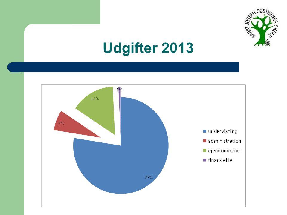 Udgifter 2013
