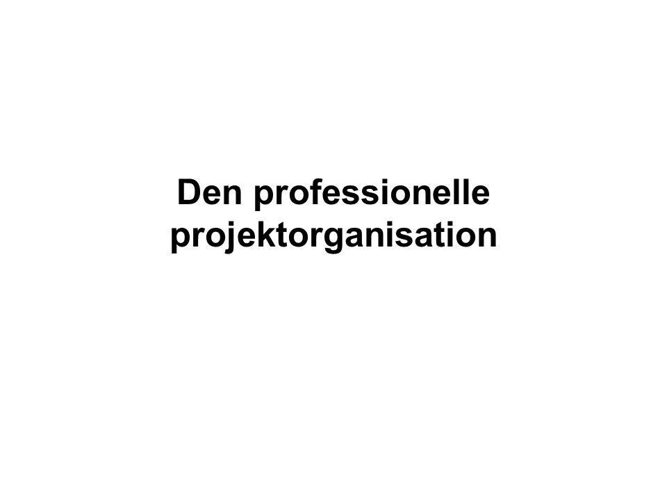 Den professionelle projektorganisation