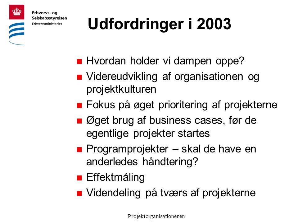 Projektorganisationenen Udfordringer i 2003  Hvordan holder vi dampen oppe.