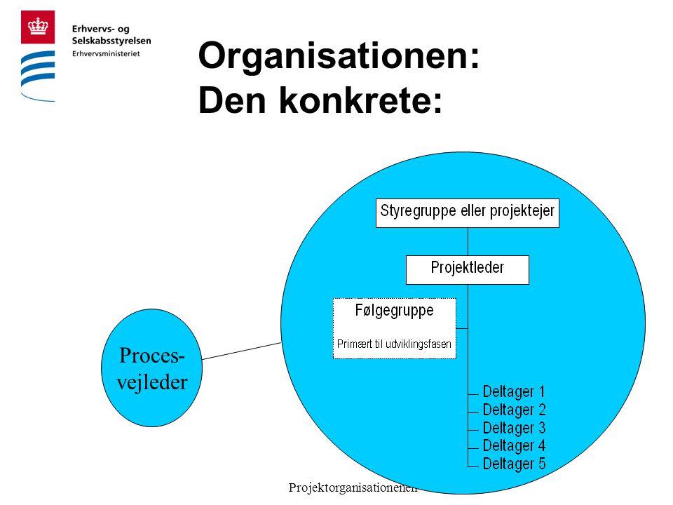 Projektorganisationenen Organisationen: Den konkrete: Proces- vejleder