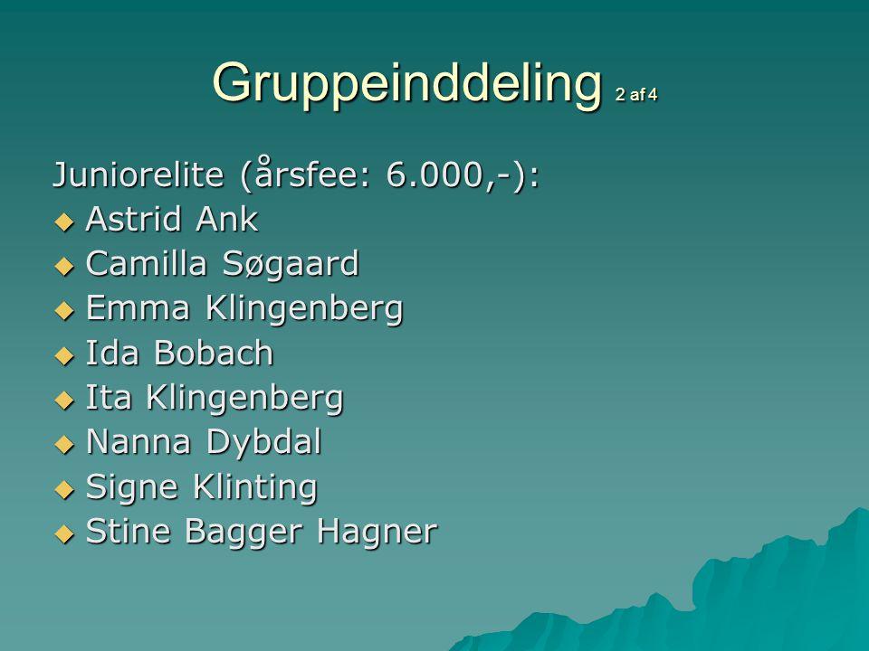 Gruppeinddeling 2 af 4 Juniorelite (årsfee: 6.000,-):  Astrid Ank  Camilla Søgaard  Emma Klingenberg  Ida Bobach  Ita Klingenberg  Nanna Dybdal  Signe Klinting  Stine Bagger Hagner