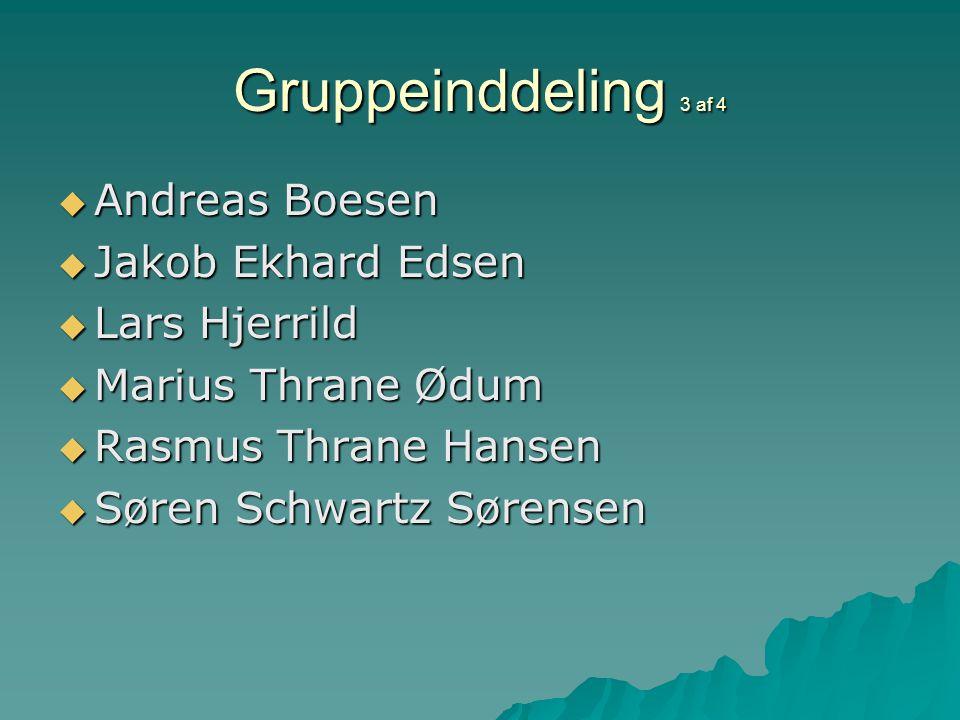 Gruppeinddeling 3 af 4  Andreas Boesen  Jakob Ekhard Edsen  Lars Hjerrild  Marius Thrane Ødum  Rasmus Thrane Hansen  Søren Schwartz Sørensen