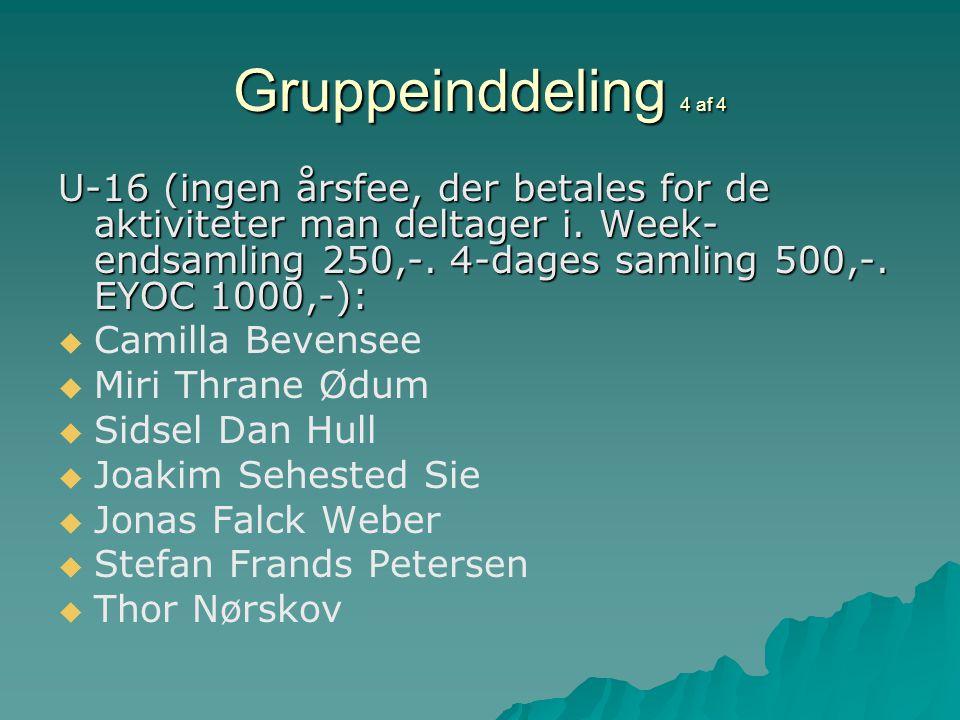Gruppeinddeling 4 af 4 U-16 (ingen årsfee, der betales for de aktiviteter man deltager i.