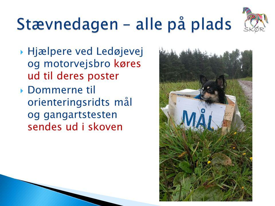  Hjælpere ved Ledøjevej og motorvejsbro køres ud til deres poster  Dommerne til orienteringsridts mål og gangartstesten sendes ud i skoven
