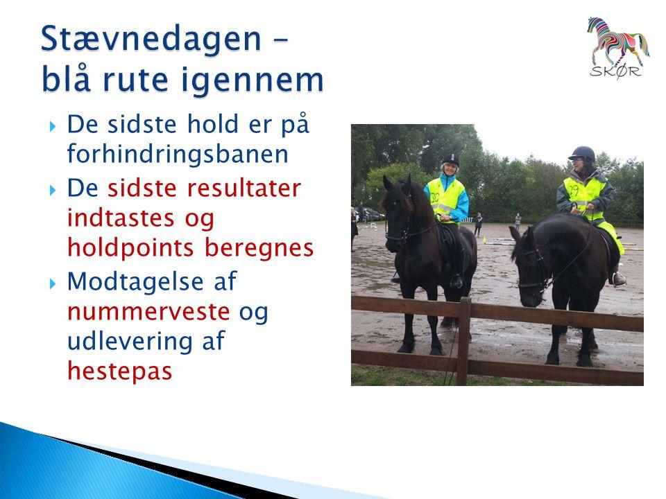  De sidste hold er på forhindringsbanen  De sidste resultater indtastes og holdpoints beregnes  Modtagelse af nummerveste og udlevering af hestepas