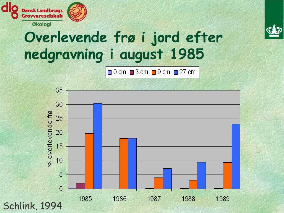 Overlevende frø i jord efter nedgravning i august 1985 Schlink, 1994