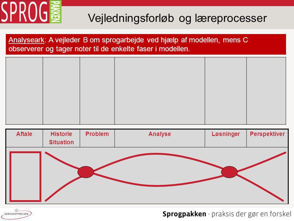 Vejledningsforløb og læreprocesser Analyseark: A vejleder B om sprogarbejde ved hjælp af modellen, mens C observerer og tager noter til de enkelte faser i modellen.