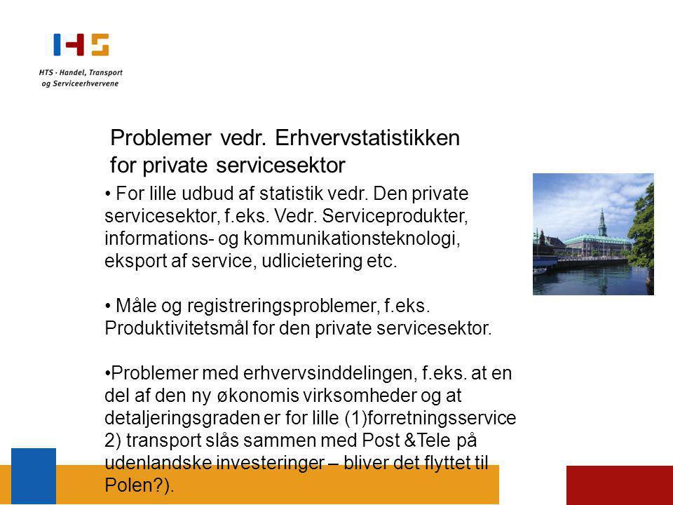 Problemer vedr. Erhvervstatistikken for private servicesektor For lille udbud af statistik vedr.
