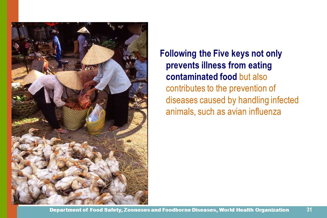 Department of Food Safety, Zoonoses and Foodborne Diseases, World Health Organization 30 Live Animal (Poultry) Markets in Asia