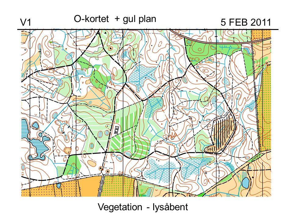 Vegetation - lysåbent V1 5 FEB 2011 O-kortet + gul plan