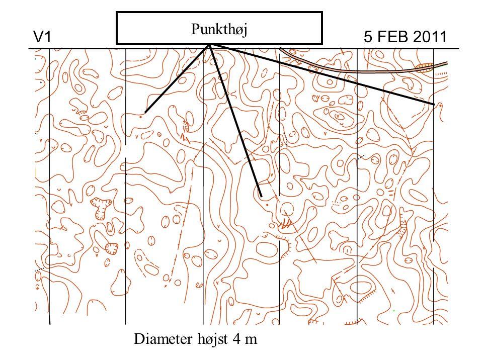 Høj Punkthøj V1 5 FEB 2011 Diameter højst 4 m