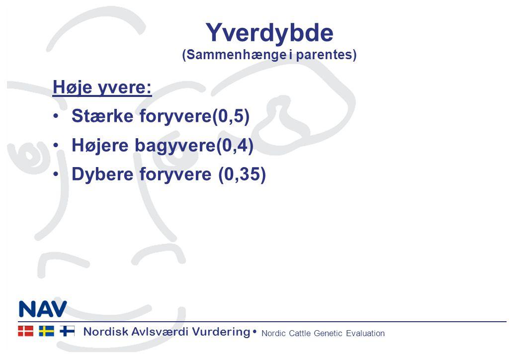 Nordisk Avlsværdi Vurdering Nordic Cattle Genetic Evaluation Yverdybde (Sammenhænge i parentes) Høje yvere: Stærke foryvere(0,5) Højere bagyvere(0,4) Dybere foryvere (0,35)