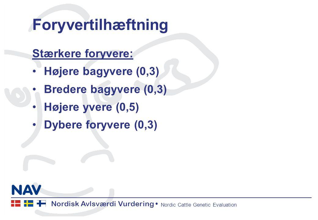 Nordisk Avlsværdi Vurdering Nordic Cattle Genetic Evaluation Foryvertilhæftning Stærkere foryvere: Højere bagyvere (0,3) Bredere bagyvere (0,3) Højere yvere (0,5) Dybere foryvere (0,3)
