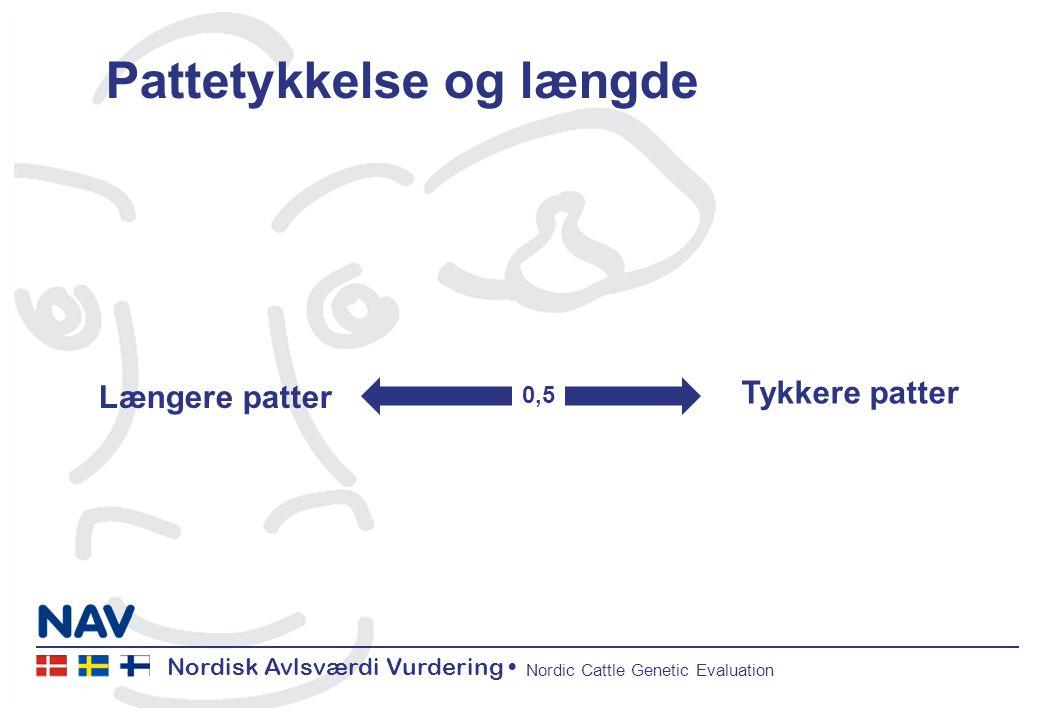 Nordisk Avlsværdi Vurdering Nordic Cattle Genetic Evaluation Pattetykkelse og længde Længere patter Tykkere patter 0,5