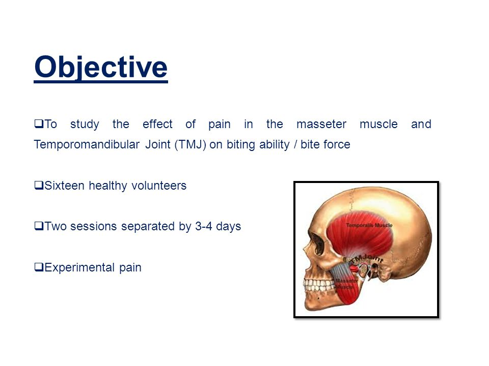 Objective  To study the effect of pain in the masseter muscle and Temporomandibular Joint (TMJ) on biting ability / bite force  Sixteen healthy volunteers  Two sessions separated by 3-4 days  Experimental pain