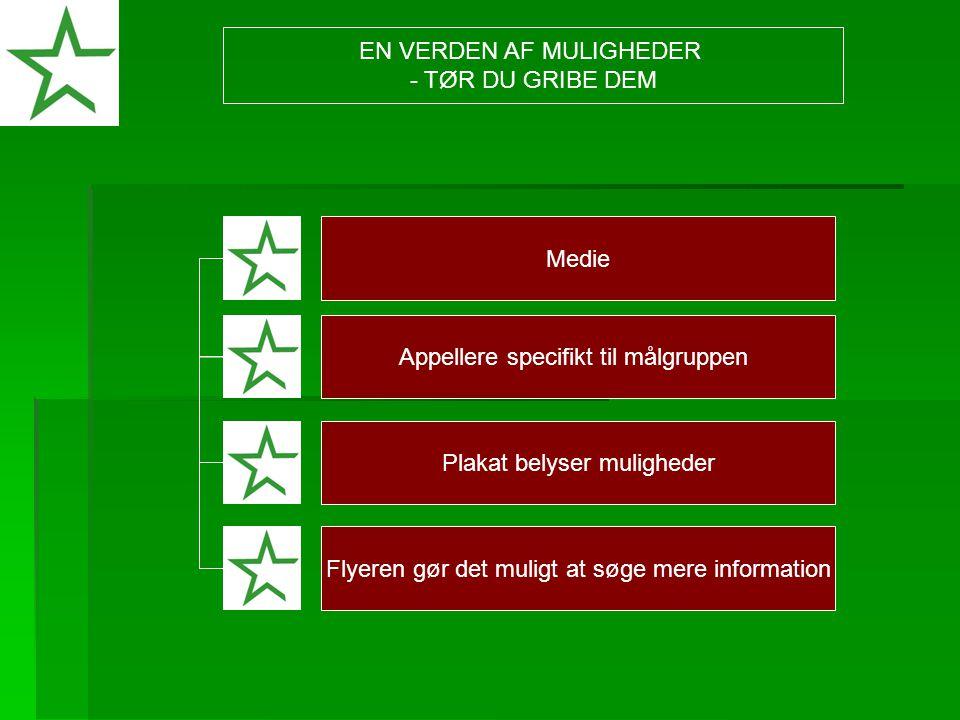 Medie Appellere specifikt til målgruppen Plakat belyser muligheder Flyeren gør det muligt at søge mere information EN VERDEN AF MULIGHEDER - TØR DU GRIBE DEM