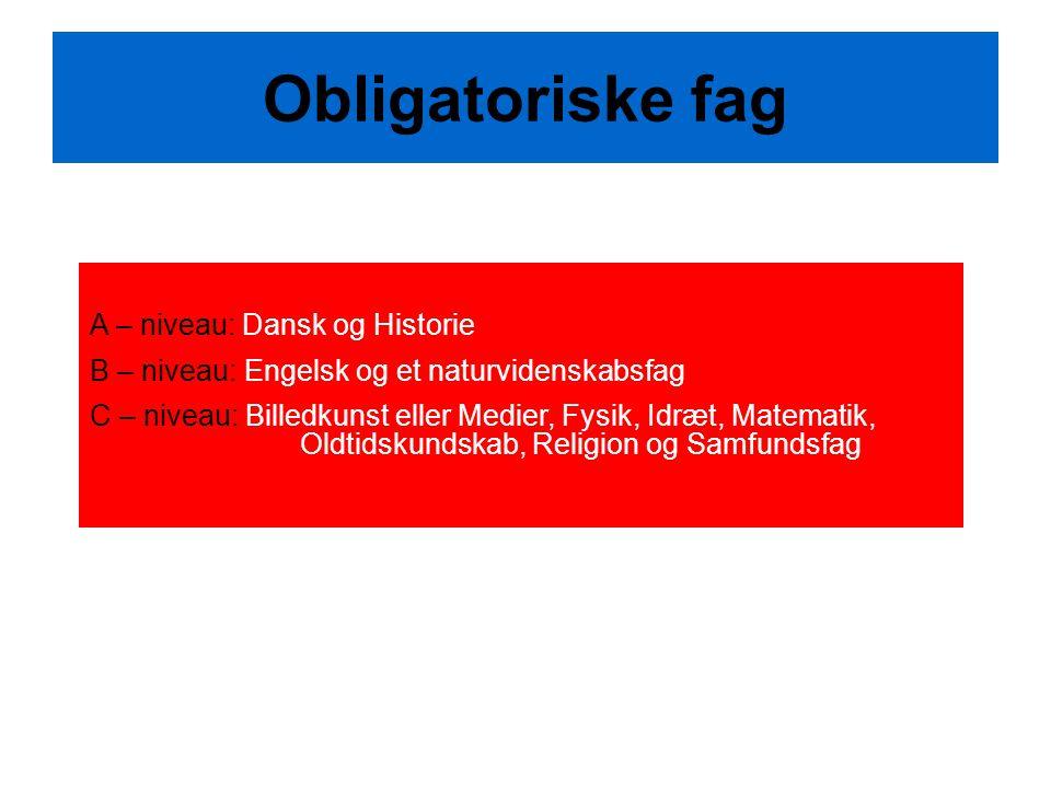 Obligatoriske fag A – niveau: Dansk og Historie B – niveau: Engelsk og et naturvidenskabsfag C – niveau: Billedkunst eller Medier, Fysik, Idræt, Matematik, Oldtidskundskab, Religion og Samfundsfag
