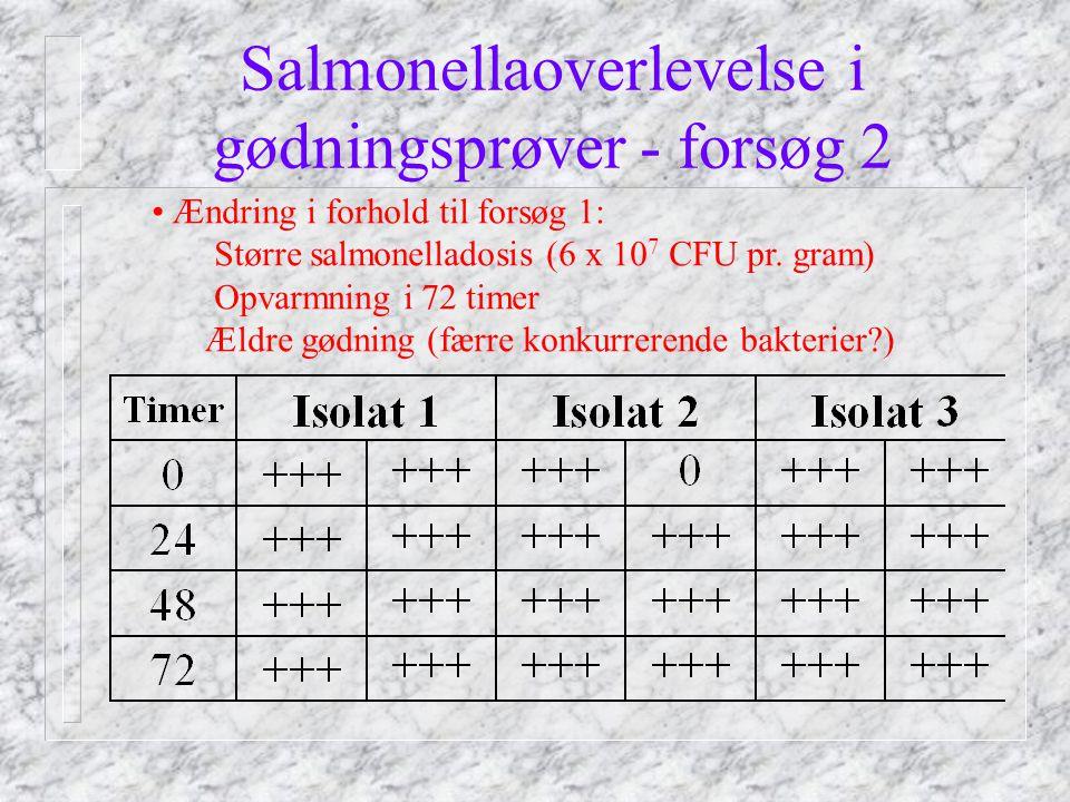 Salmonellaoverlevelse i gødningsprøver - forsøg 2 Ændring i forhold til forsøg 1: Større salmonelladosis (6 x 10 7 CFU pr.