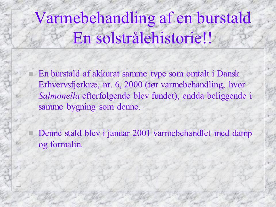 Varmebehandling af en burstald En solstrålehistorie!.
