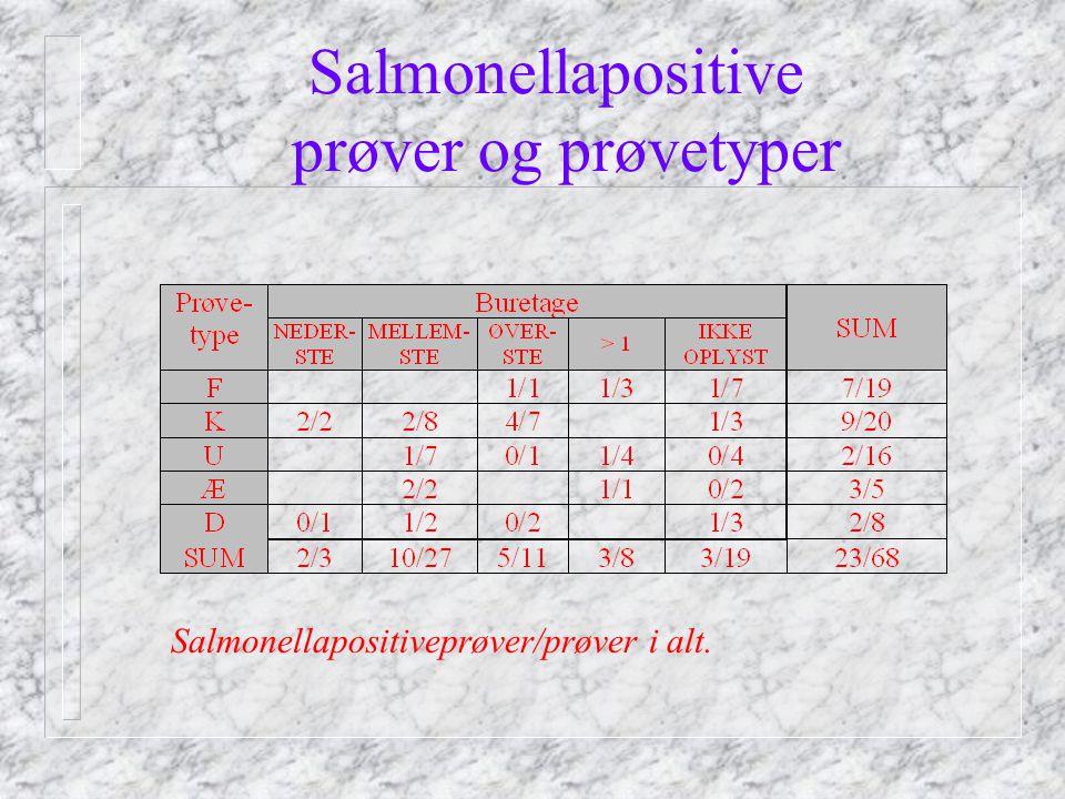 Salmonellapositive prøver og prøvetyper Salmonellapositiveprøver/prøver i alt.