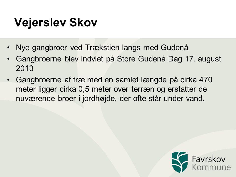 Vejerslev Skov Nye gangbroer ved Trækstien langs med Gudenå Gangbroerne blev indviet på Store Gudenå Dag 17.